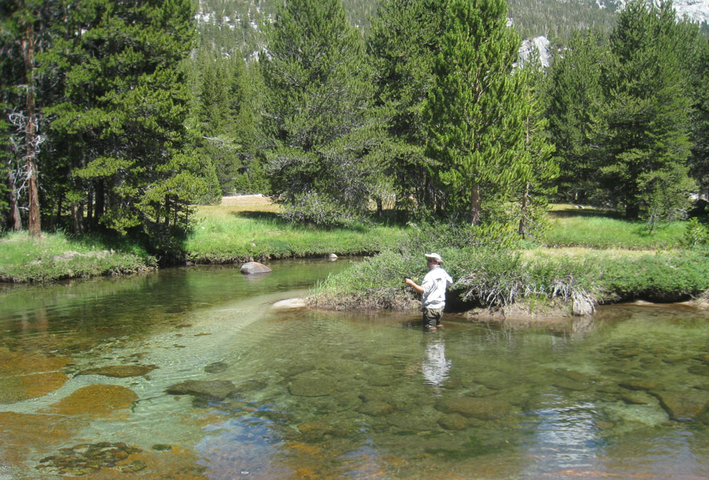 John muir trail 30 day with gps tracks fishing tips 39 2010 for Fishing in yosemite