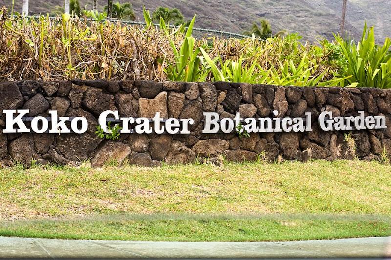 Photos By Jalna Koko Crater Botanical Garden 9 30 2008