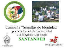 PRESENTACION CAMPAÑA SANTANDER