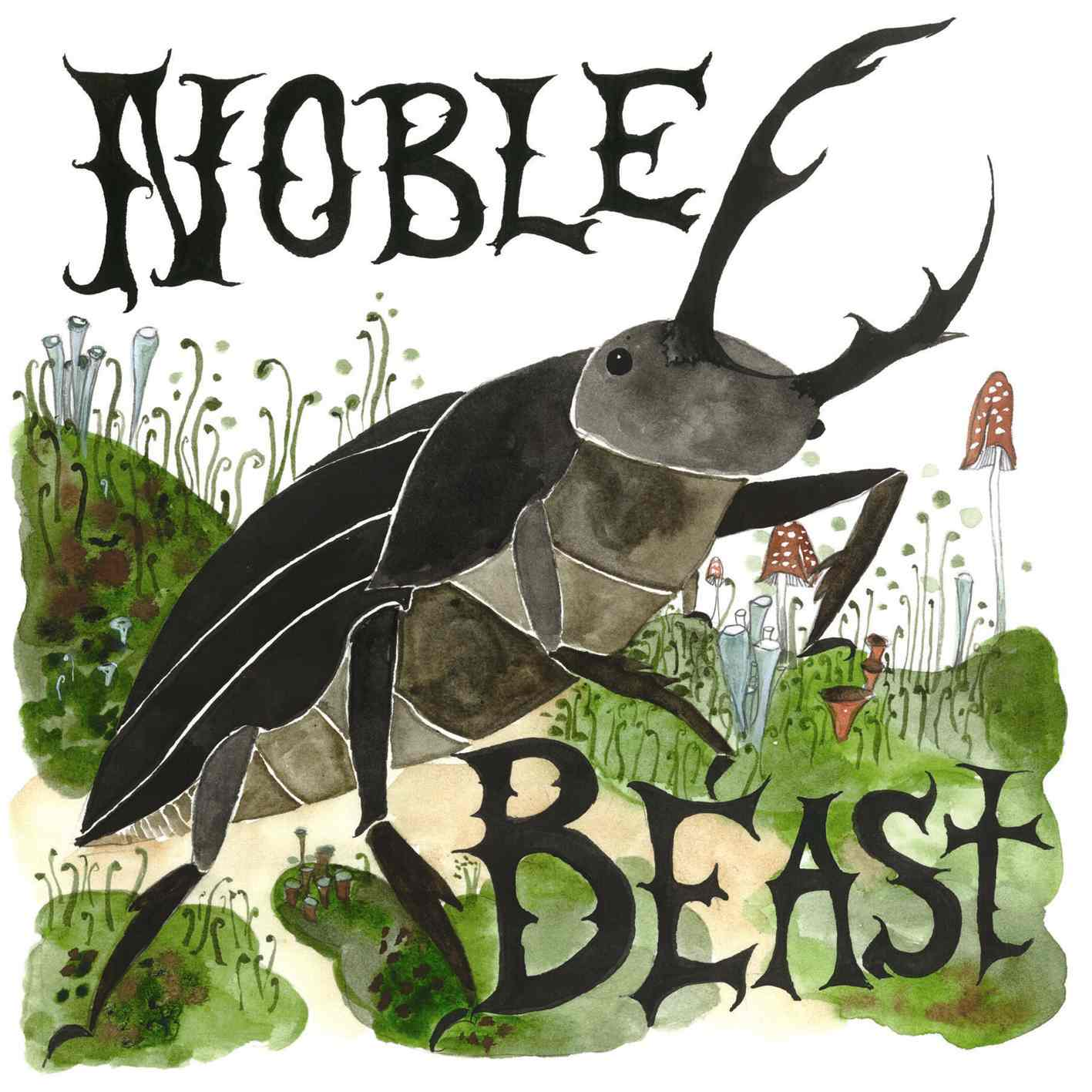 Really Important Reviews Andrew Bird Noble Beast