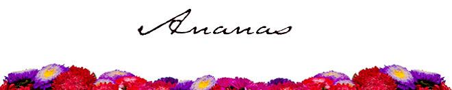 Ananas : Blog
