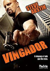Baixar Filme Vingador [2010] (Dual Audio) Online Gratis