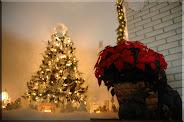 """Nana""""s Snowbaby Tree"""