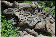 Tree of Life Garden at Animal Kingdom