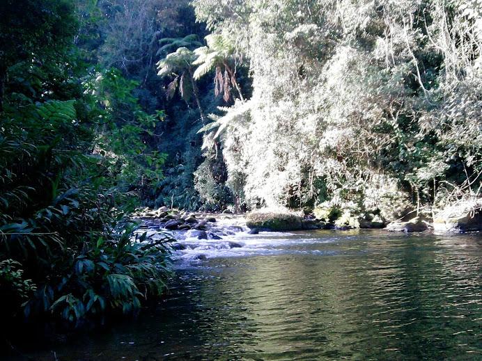 Piscina Natural-Um mergunho na natureza