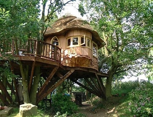 [treehouse1.jpg]