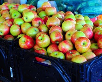 Missouri apples