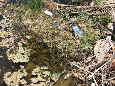 Degradação dos mananciais de água..