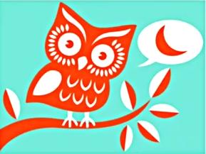 twitter owl