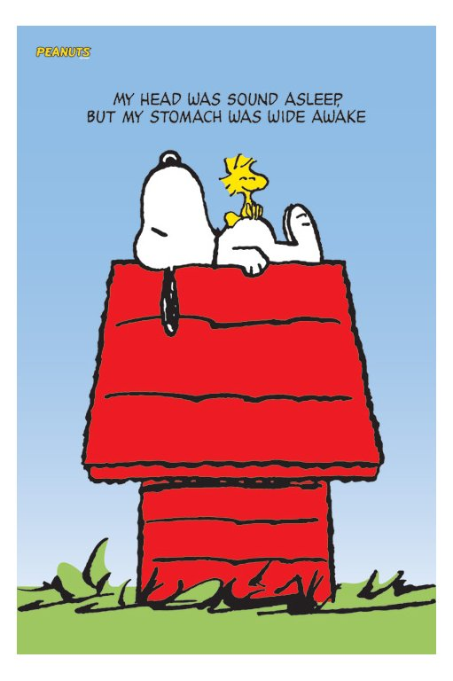 Snoopy Dog House For Dogs