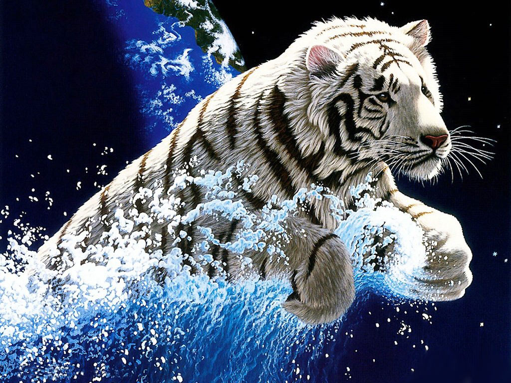 collectionphotos 2017 wonderful white tiger wallpaper hd 2014