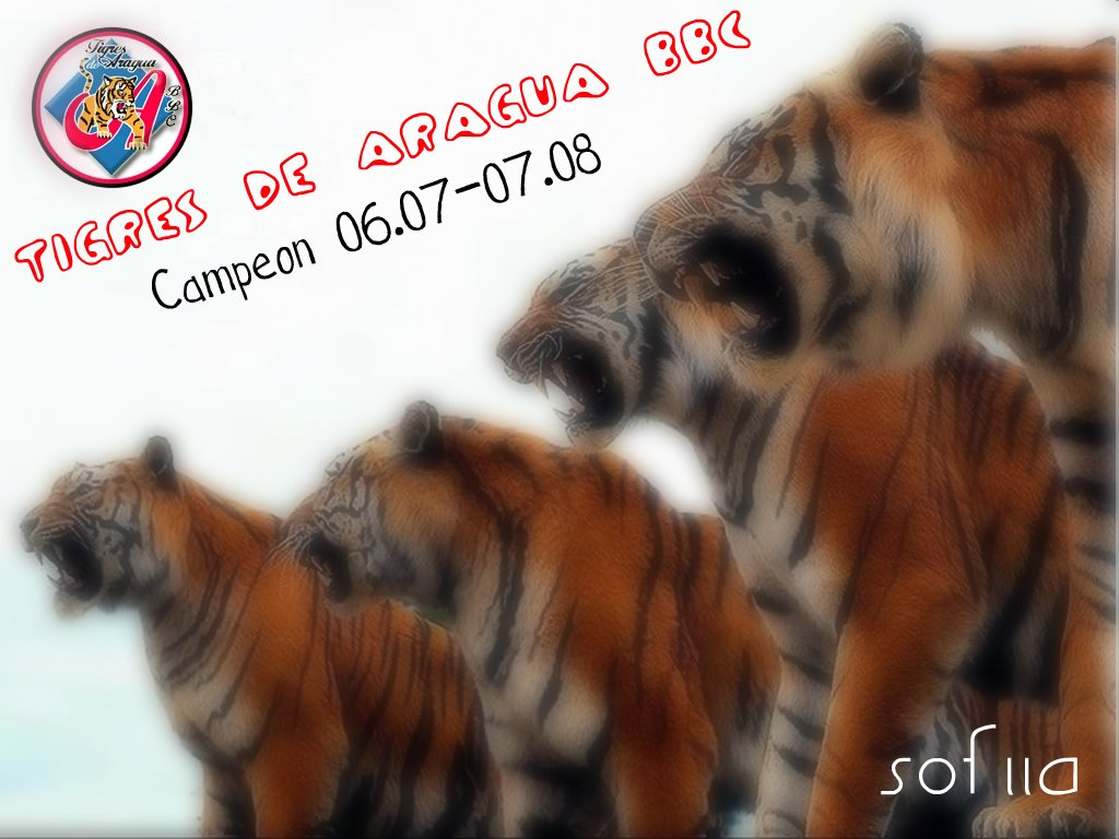 http://2.bp.blogspot.com/_Q0ltEyCnttc/SWqlKQU0WlI/AAAAAAAAAFo/A3RwS-L3z4M/S1600-R/Tigres%2Bde%2BAragua2.jpg