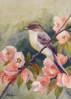 Eastern Phoebe watercolor painting