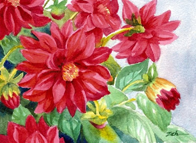 Dahlia flowers