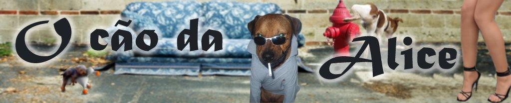 O cão da alice