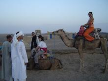 Passeig pel desert...