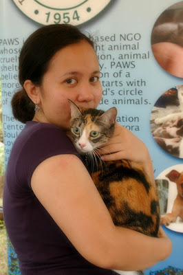 Former PAWS Shelter Cat with Liza Umayam - MeFindHome.org