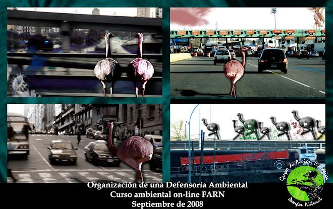 Defensoría Ambiental- Participación Ciudadana