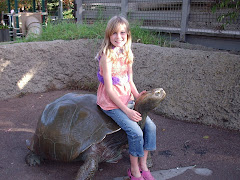 How to ride a turtle!!