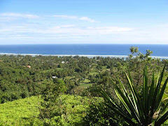Raratonga from the top of the hill