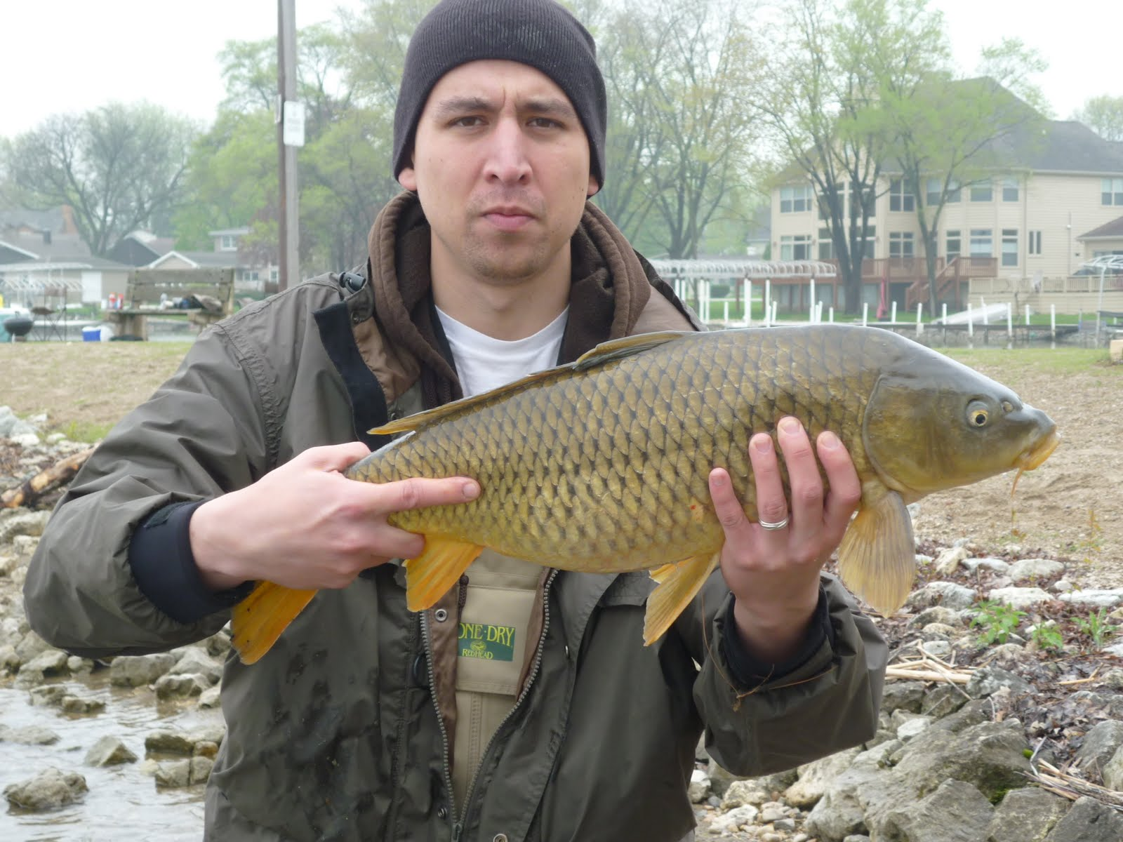 Illinois wisconsin fishing carp fishing fox chain of for Fishing for carp