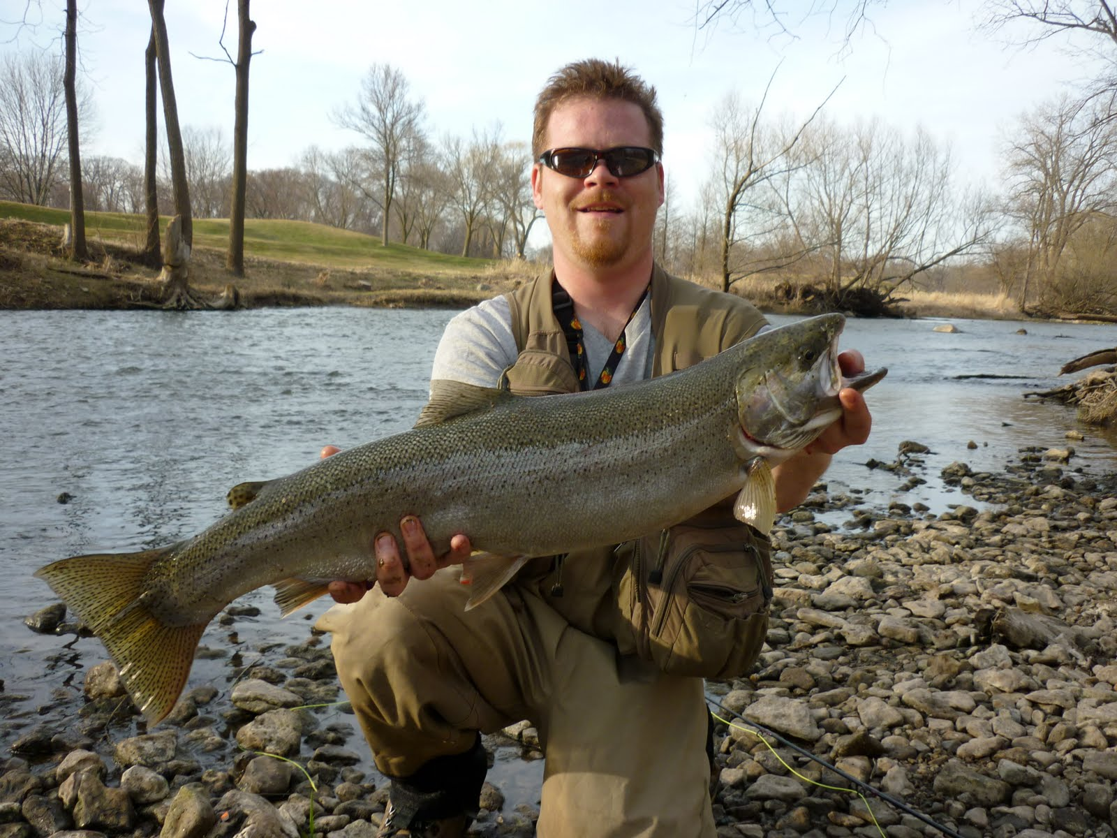 Illinois wisconsin fishing fly fishing steelhead root for Wisconsin trout fishing