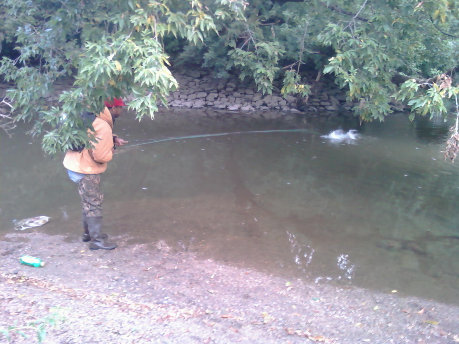 Illinois wisconsin fishing salmon fishing racine county wi for Salmon fishing wisconsin