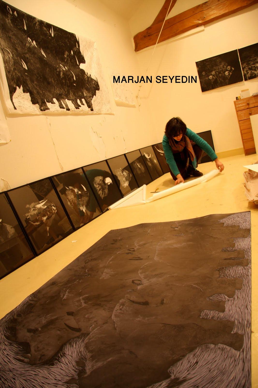 MARJAN SEYEDIN