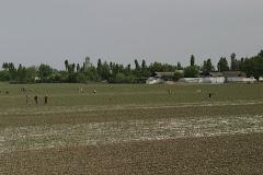 Ferghanan laakso lähellä historiallista Kokandin kaupunkia