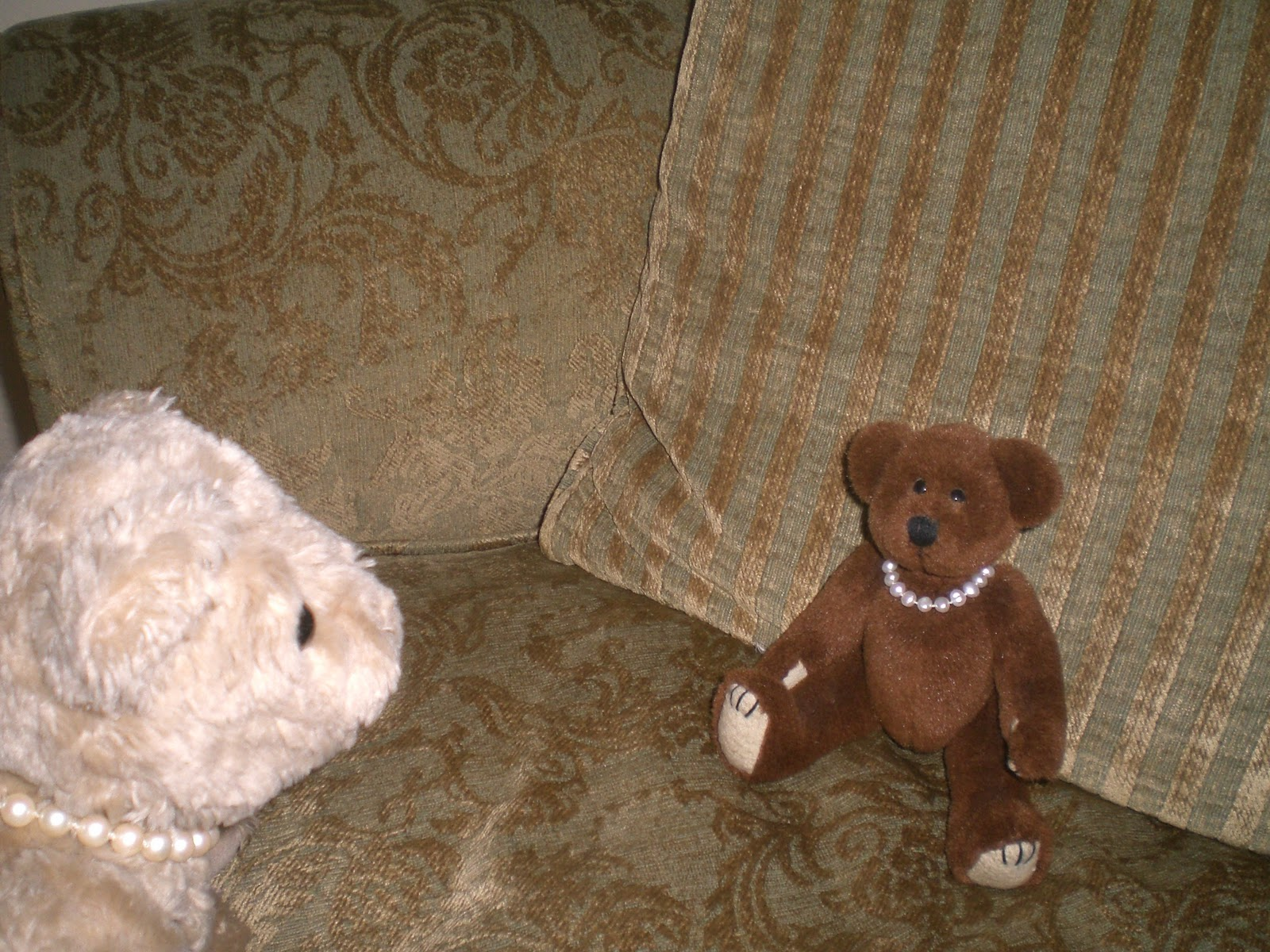 Teddy and nibs she 39 s hereeeeeeeeee - Sofa herbergt s werelds ...