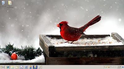 my desktop wallpaper