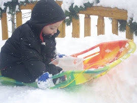 Tobey playing with Sled