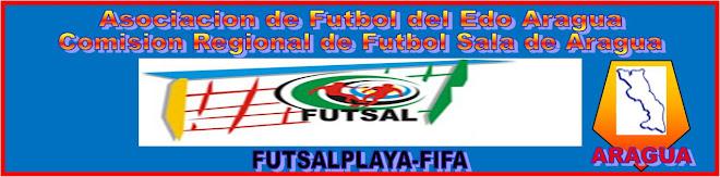 Asociacion de fútbol del Estado aragua