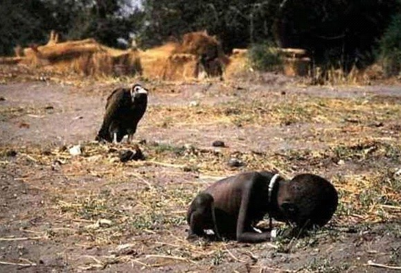 Sudanese child dying of hunger. A vulture awaits its meal. Every ...