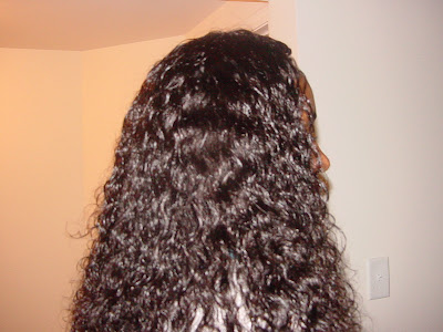 Tree Braids Wet and Wavy