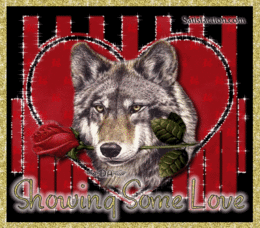 wolf valentine
