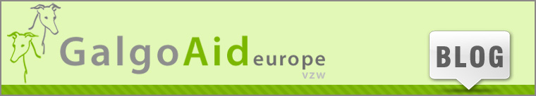 Welkom op het blog van Galgo Aid Europe