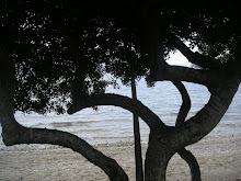 TREE VIEW