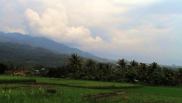kampung halaman bumiayu ,pebruari 2009