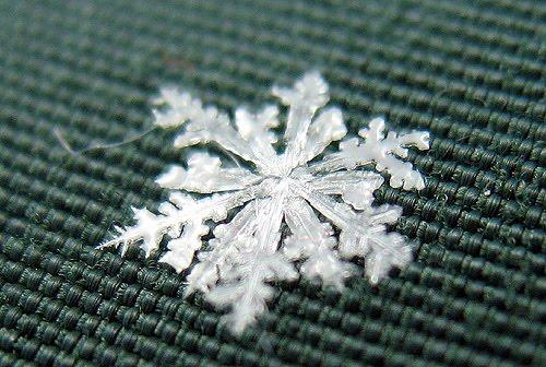 Artistic Snowflake Shapes 9