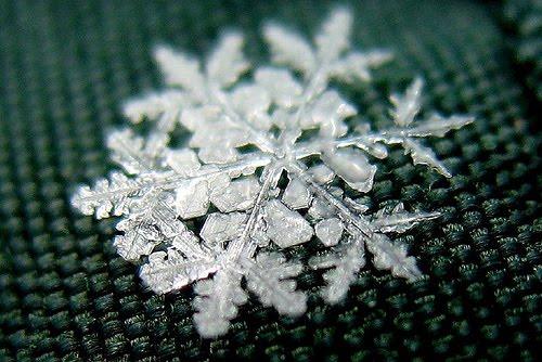 Artistic Snowflake Shapes 8