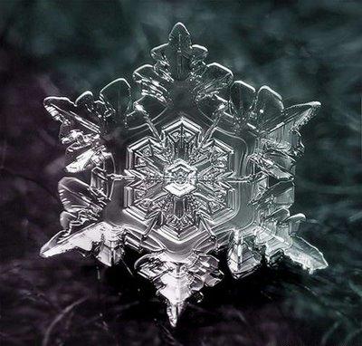 Artistic Snowflake Shapes 4
