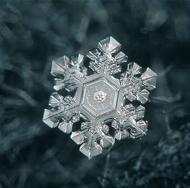 Artistic Snowflake Shapes 1