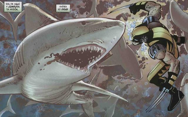 Wolverine versus un pobre escuálido