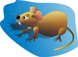 """Résultat de recherche d'images pour """"logo anti rat"""""""