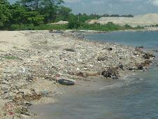 Porque Ninguna Autoridad Civil o' Militar Se Responsabilizan A Limpiar Nuestras Playas en Barahona?