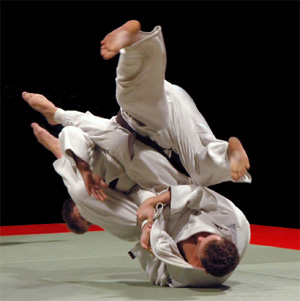 brazilian jujitsu vs kickboxi Gracie style brazilian jiu-jitsu, judo, kickboxing, muay thai, boxing, yoga, mma  and mixed martial arts in appleton, wi martial arts for adults and kids.