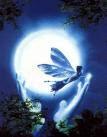 asas para sonhar...