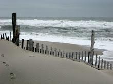 Life's A Beach!!