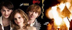 Tudo sobre o mundo mágico de Harry Potter